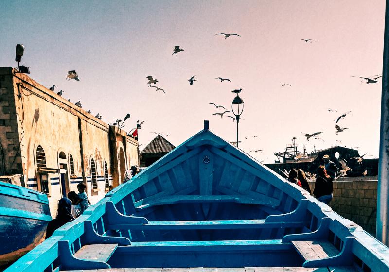 shoelifer-essaouira-maroc-voyage